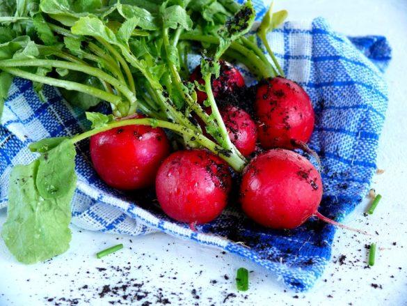 mini ogródek na balkonie w bloku, domowa uprawa warzyw