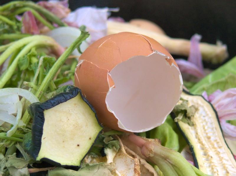 zero waste to nowy kulinarny trend czy odgrzewane kotlety?