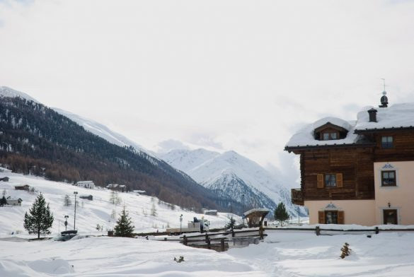 Jedziesz na deskę lub narty za granicę? Zobacz, co warto sprawdzić przed wyjazdem!