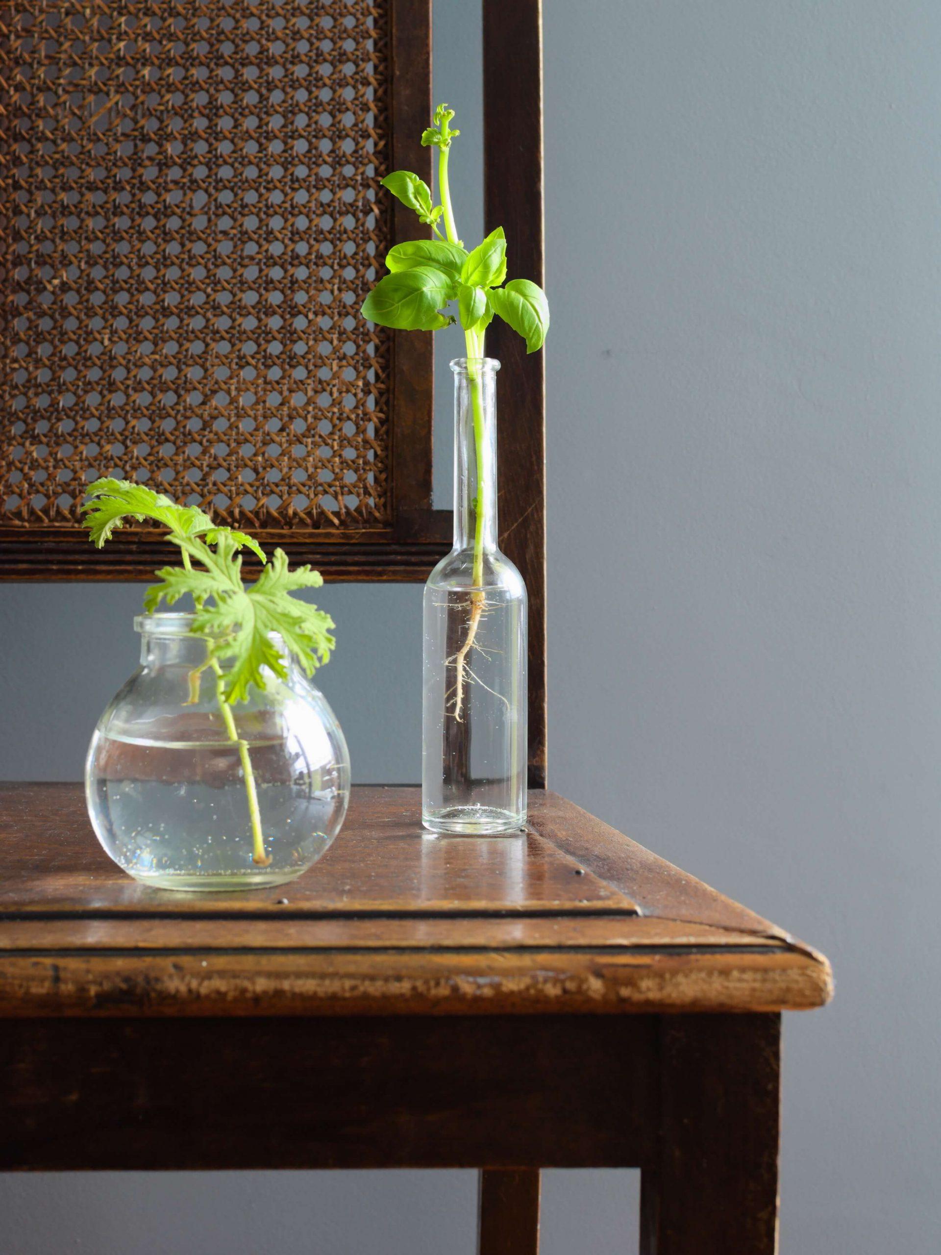 Jak oszczędzać wodę w domu? 4 proste sposoby!